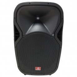 "AS-SP156 Passive Speaker 15"""
